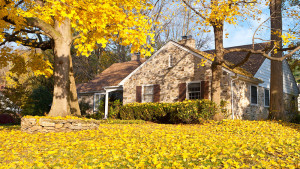 house-in-fall-autumn-leaves-090516-hero